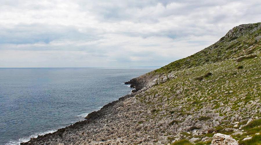 La costa in zona Punta Palascia