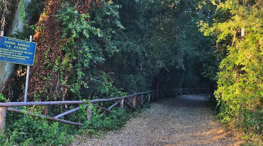 Parco Naturale delle Cesine