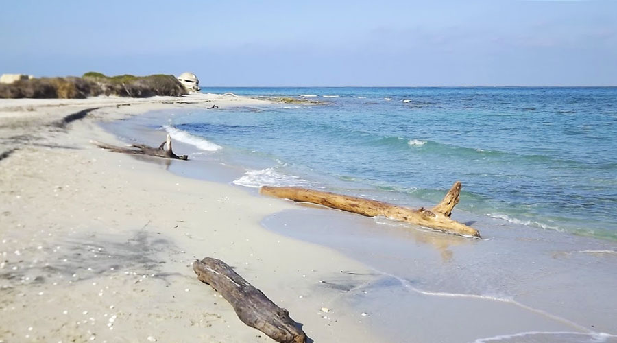Spiaggia delle Cesine