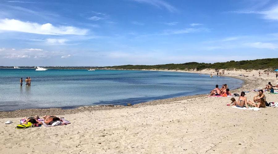 Spiaggia di Punta Pizzo